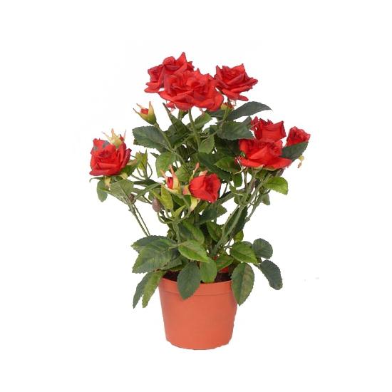 decoratie-rode-rozen-in-pot