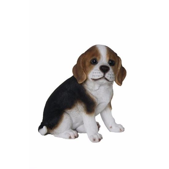 tuinbeeld-beagle-hond-pup-type-1