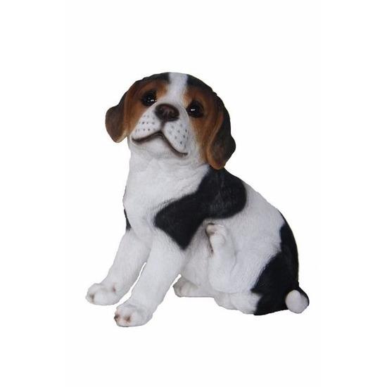 tuinbeeld-beagle-hond-pup-type-2