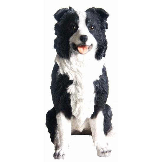 tuinbeeldje-borde-collie-hondje-26-cm